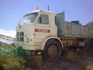 camión de carga blanco